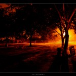 park-lighting-ii